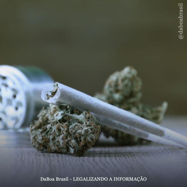 DaBoa-Brasil-Legalizando-A-Informação-blog-Juiz-alemão-recomenda-a-todos-os-juízes-que-fumem-maconha